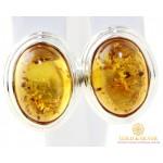 Серебряные Серьги 925 проба. Женские серебряные серьги с вставкой Янтарь 009710 , Gold & Silver Gold & Silver, Украина